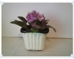 Vaso Mini para Violetas verde