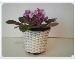 Vaso Mini para Violetas lil�s