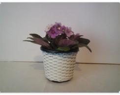 Vaso Mini para Violetas azul