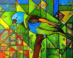 P�ssaros Coloridos do Brasil 1