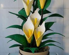 Arranjo de Flores - Copo de Leite