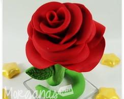 Rosa Pequeno Pr�ncipe
