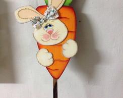 Placa jardim coelha na cenoura