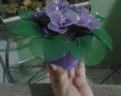 Violetas de meia de seda