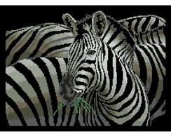 Ponto Cruz em PDF - Zebras