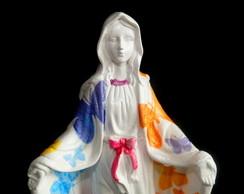 Nossa Senhora das Gra�as Colorida