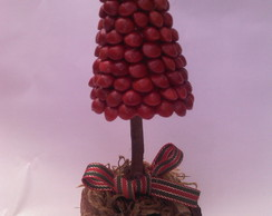 pinheiro de pau brasil mini