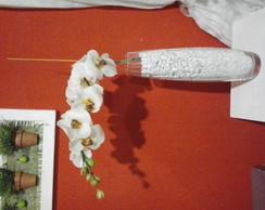 orquidea puresa