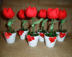 Mini Tulipa