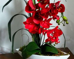 Arranjo Floral de Oquideas Vermelhas