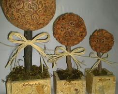 �rvores canela