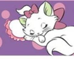 Faixa gatinha Marie