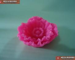 Flor de Pe�nia