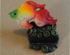 Peixinho no coral