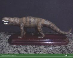 Cole��o Paleo Brasil - Prestosuchus