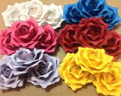 Rosas Colors