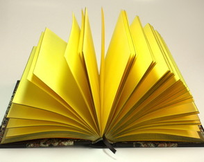 the-gold-book-caderno-artesanal-retro