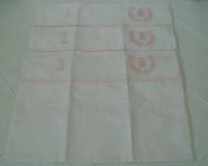 (EX 0001m) Kit envelope urso ramo rosa
