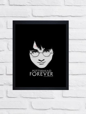 Quadro - Harry Potter