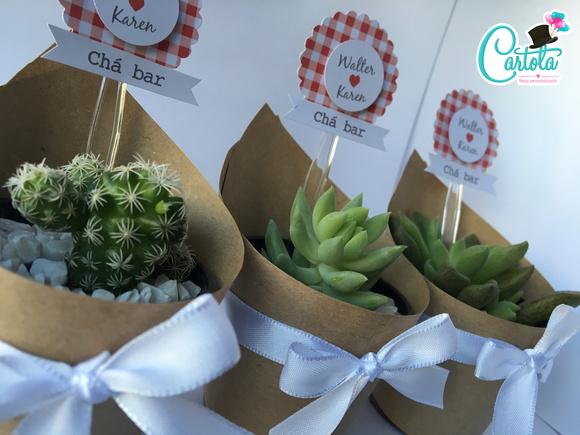 Plantas suculentas ou cactus
