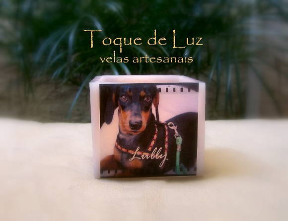 LUMIN�RIA - MY PET- 10X10