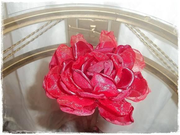 Forminha Rosa Vermelha