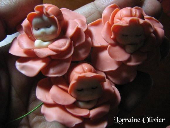 imagens jardim de rosas:Jardim de Mini-rosas