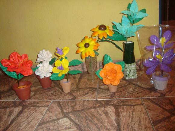 varias flores de eva