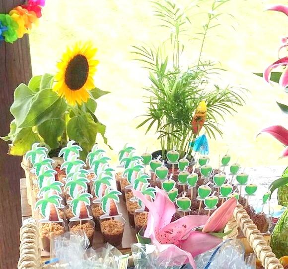 Kit Festa Havaiana 20 Pessoas Danoca Decor Elo7 -> Decoracao De Havaiana