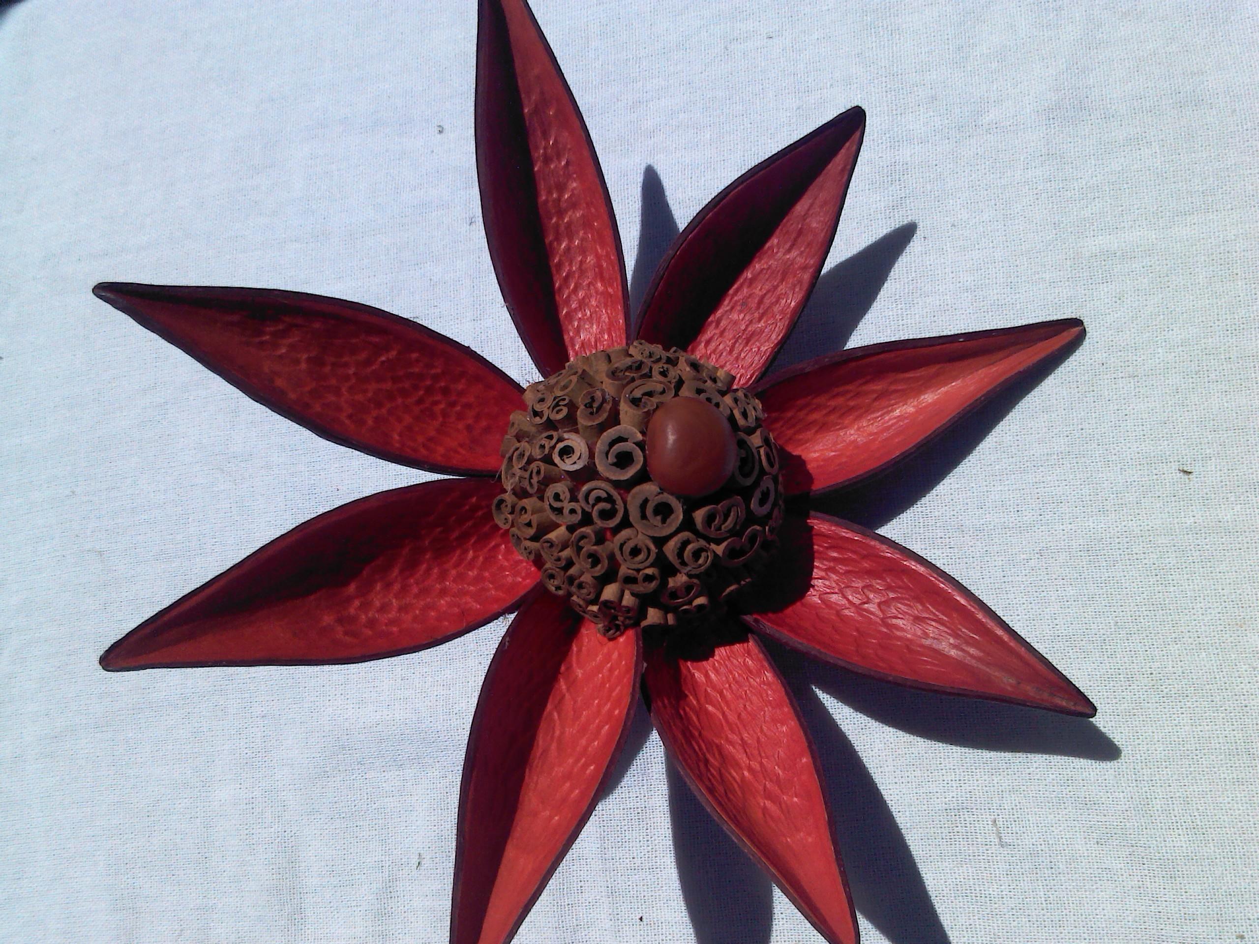 canela flor: