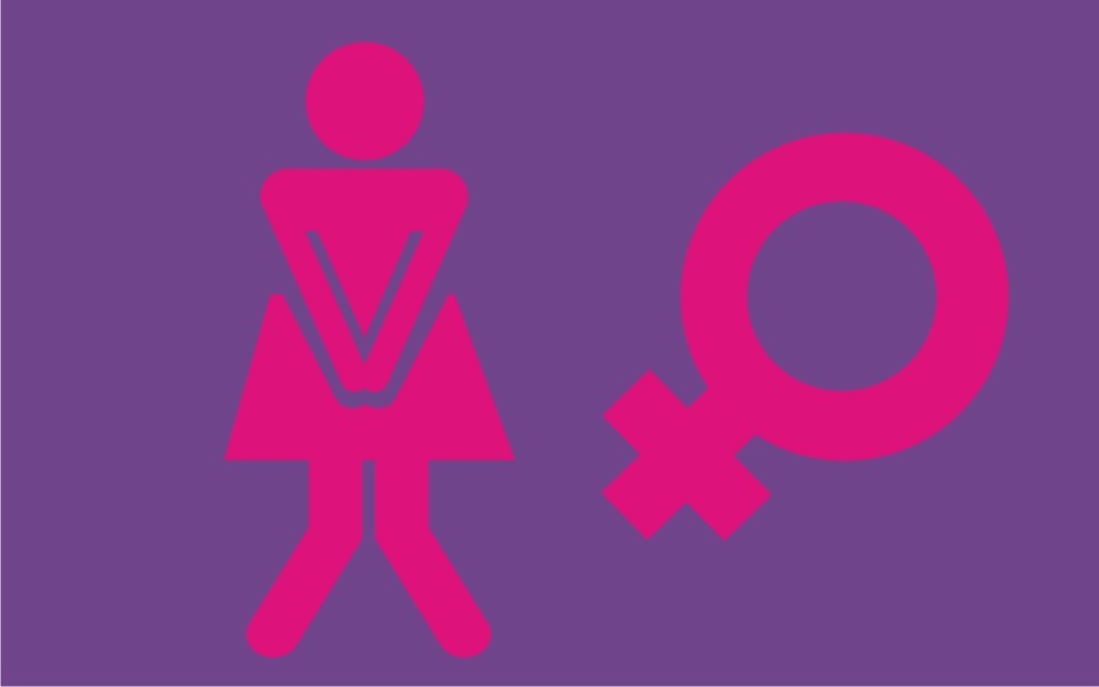 Capacho  Banheiro Feminino  Limpa Pé  Capachos  Elo7 -> Clipart Banheiro Feminino
