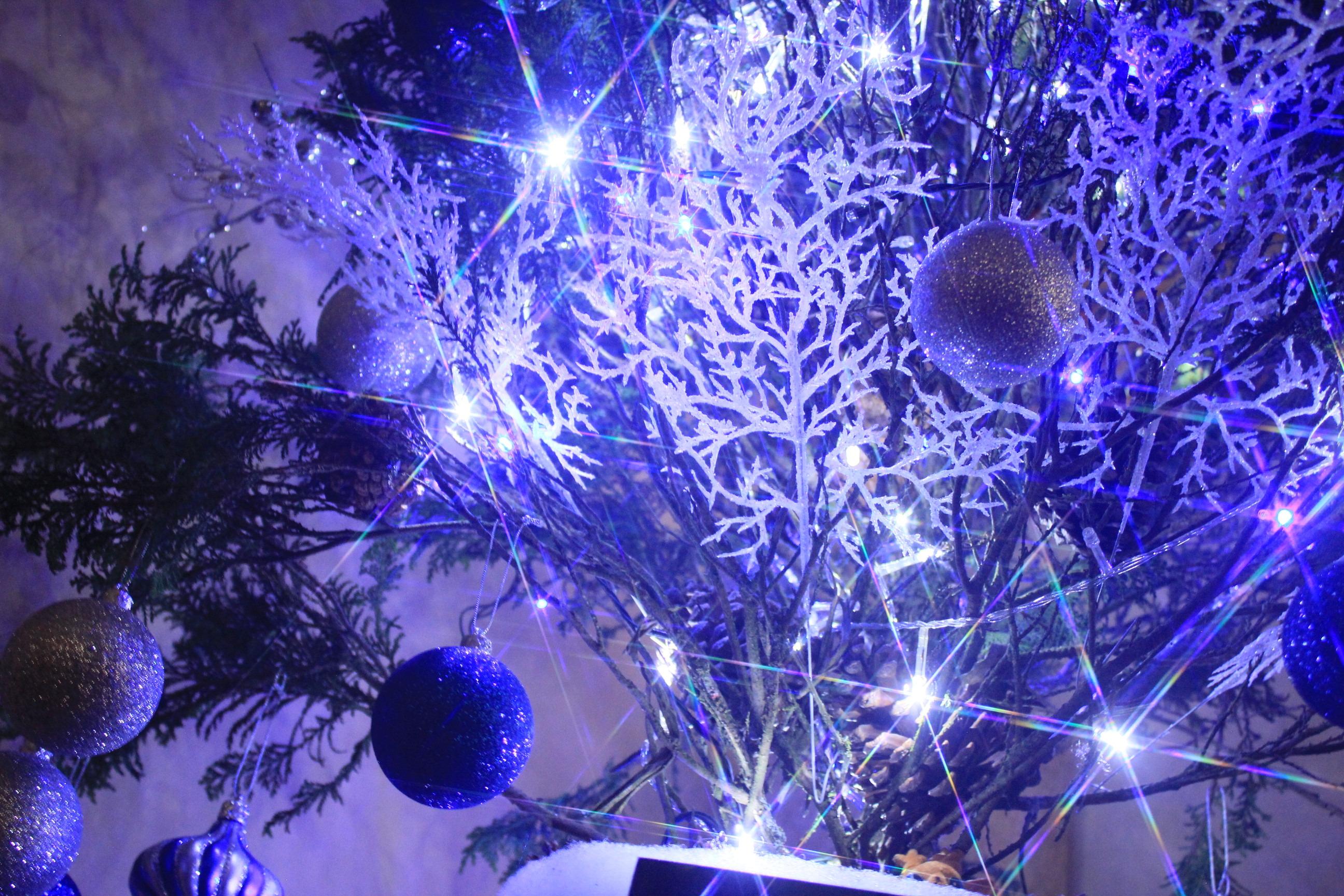 decoracao arvore de natal azul:arvore-de-natal-personalz-azul-branco-roxo arvore-de-natal-personalz