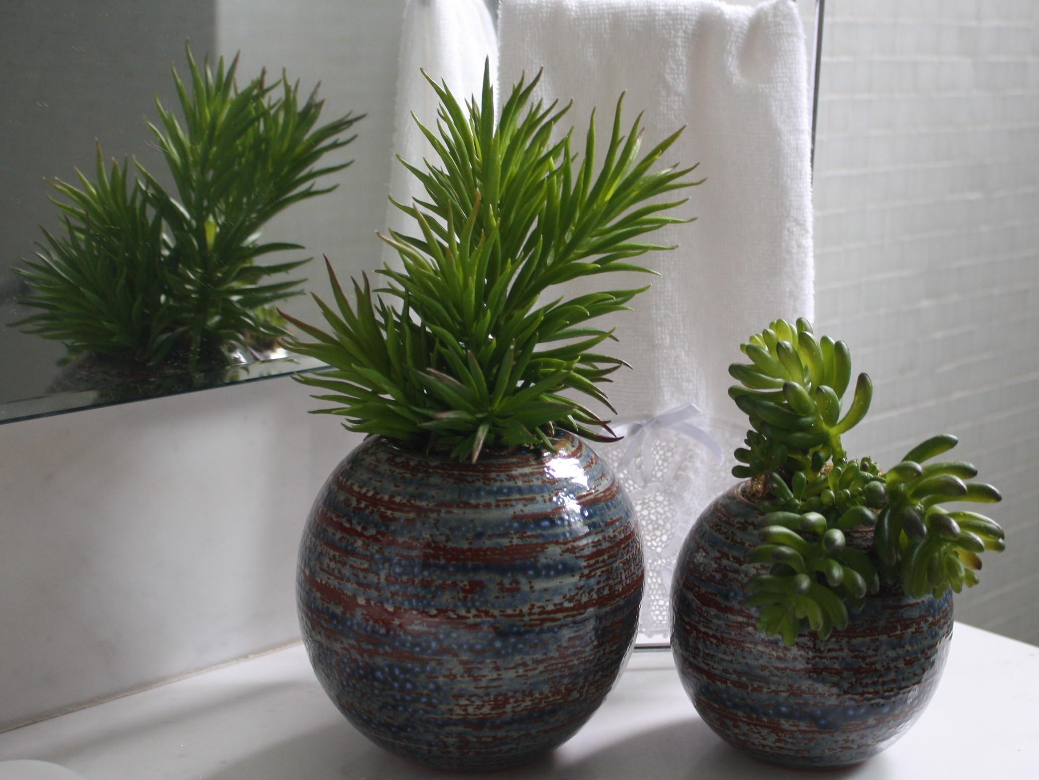 frete gratis duo de suculentas risk flores artificiais frete gratis #4C5A2E 2090x1570 Balança Para Banheiro Frete Gratis