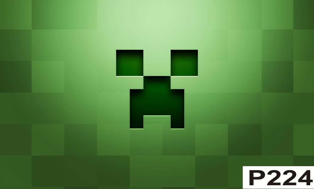 Painel Minecraft Frete Grátis