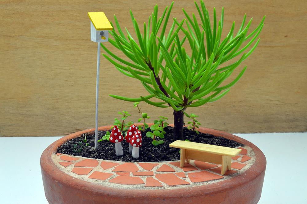 Mini Jardim Quintal Peq-SP/Capital e ABC Mini Jardim e ...
