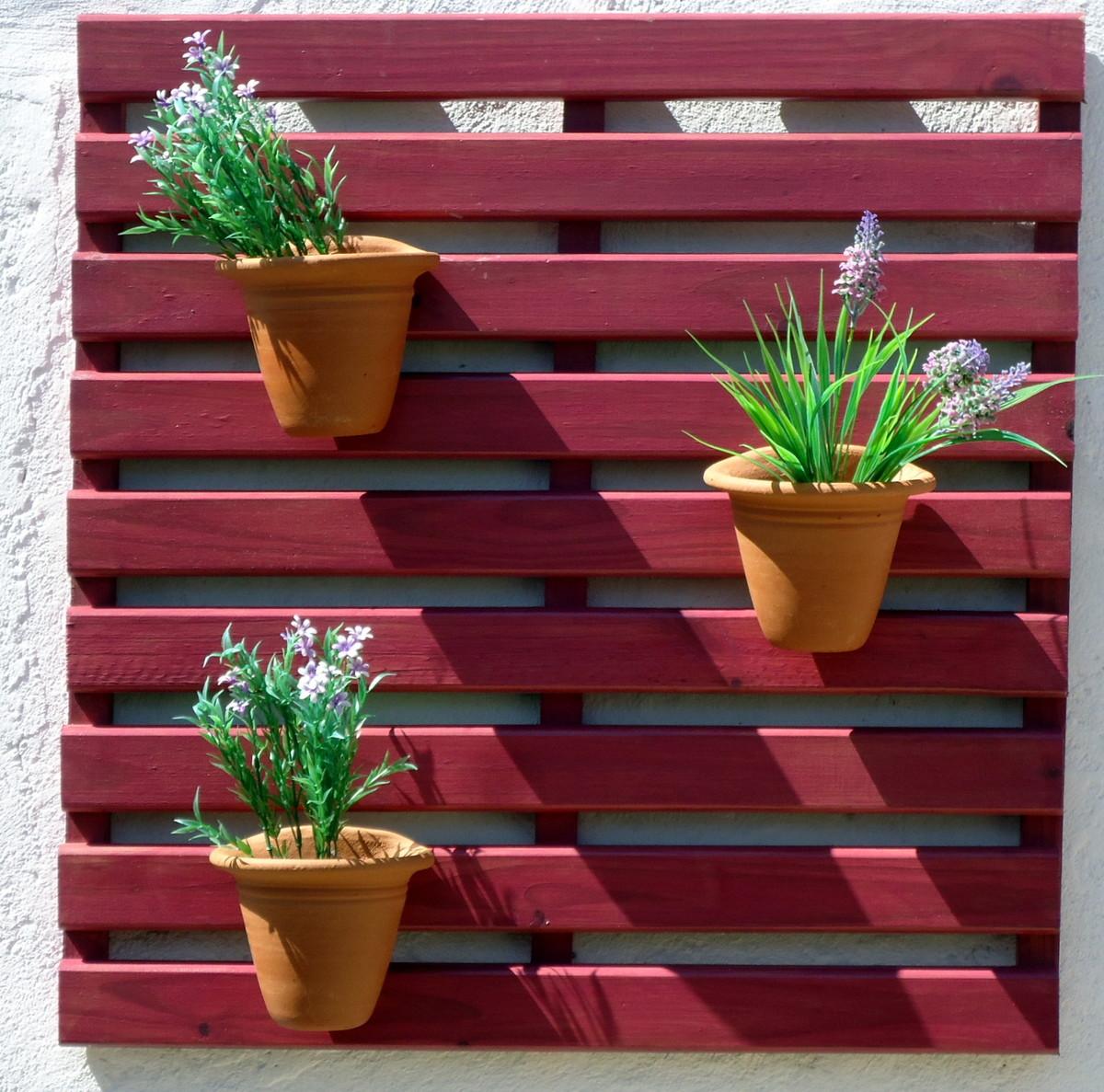 plantas para jardim horizontal:painel-p-jardim-vertical-framboesa-plantas painel-p-jardim-vertical