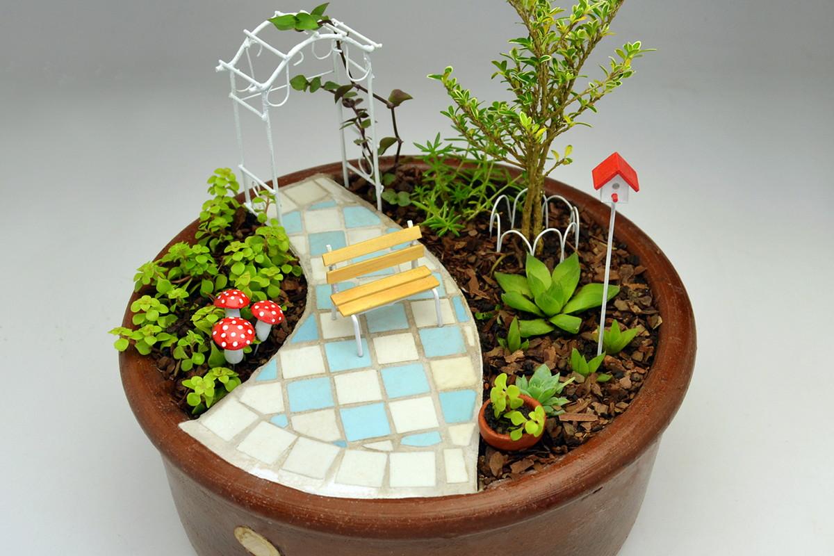 Mini Jardim Caminho Azul - SP/Cap. e ABC Mini Jardim e ...