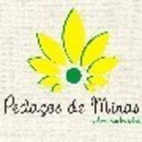 Peda�os de Minas