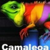Camaleoa!