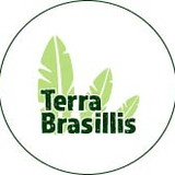Terra Brasillis by Claudia Araujo