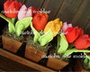 CO 02 - APOSTILA DIGITAL Tulipas