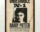 Quadro Harry Potter Undesirable Nr 1