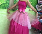 ROUPA ADULTO BARBIE ESCOLA DE PRINCESA