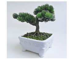 ARRANJO BONSAI - 03