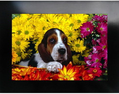 QUADRO DECORATIVO - ANIMAL 16