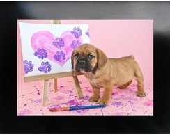 QUADRO DECORATIVO - ANIMAL 22