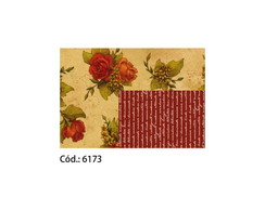 Cartolina Decorada 120g c/20 65x47 #6173