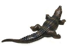 b8d769f9aa90e ... Crocodilo - Jacaré Em Resina - 61cm