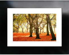 QUADRO DECOR PREMIUM - ESTAMPA 29