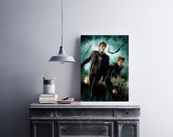 "Placa decorativa ""Harry Potter"""
